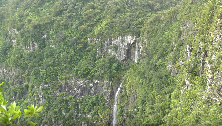 Black River Gorges Mauritius from viewpoint