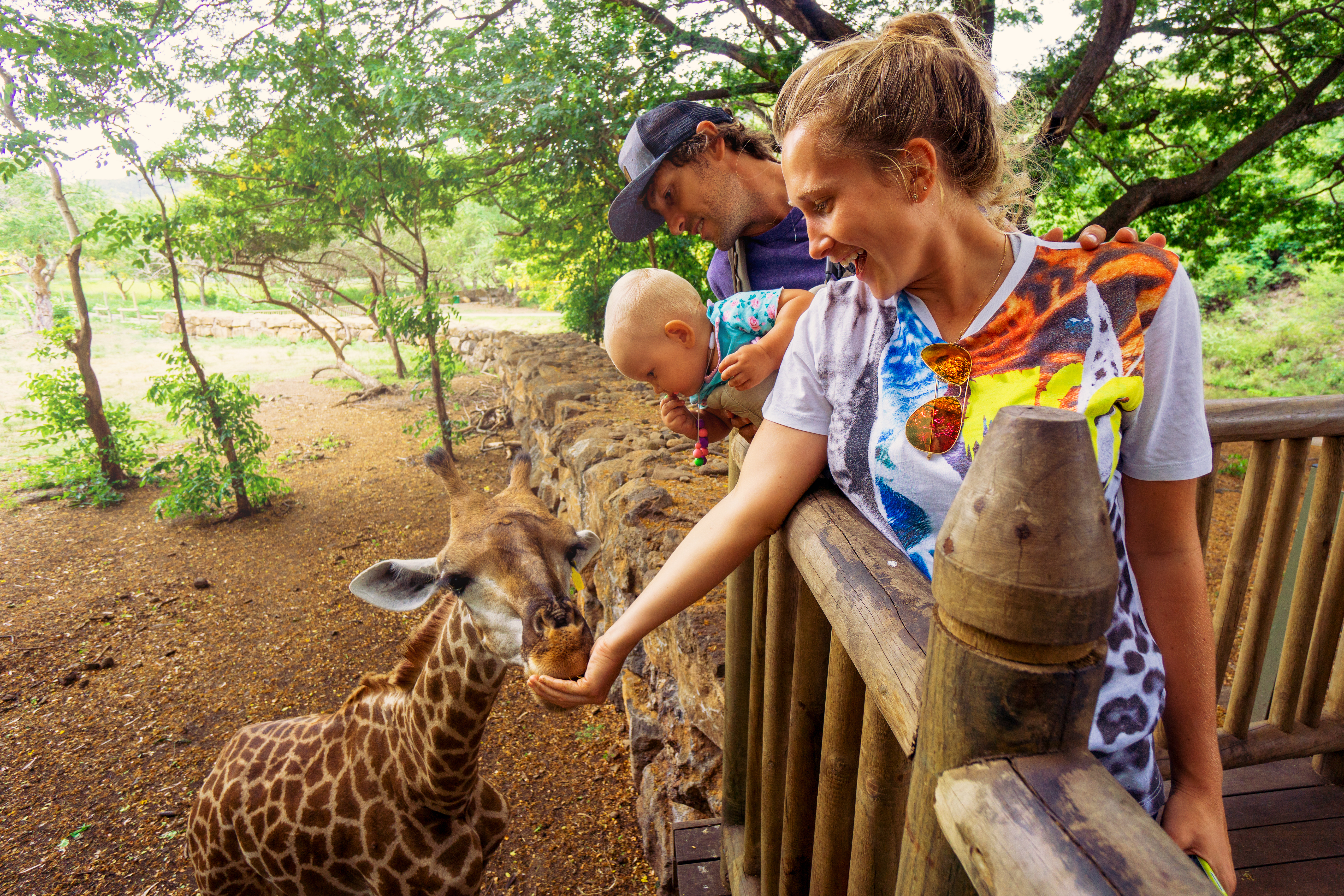 Young couple feeding giraffe at Casela World of Adventures Mauritius