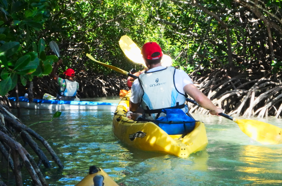 Tourists Sea Kayaking among mangroves at Ile d'ambre